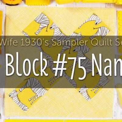 Nan is Block 75 of Farmer's Wife 1930's Sampler Quilt